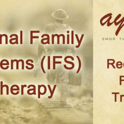 internal family systems ayan mukherjee emdr therapy toronto